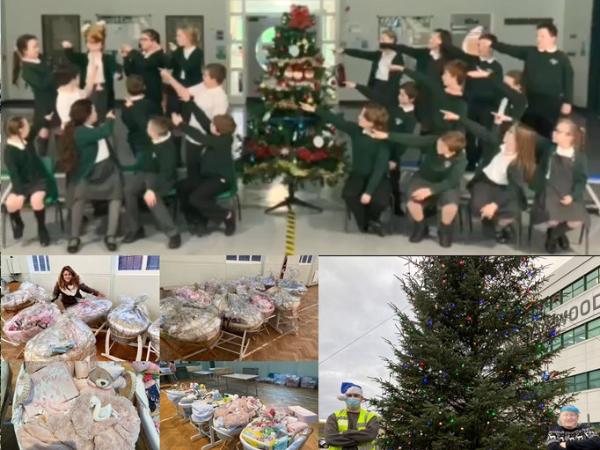 HALEWOOD'S TERRIFIC 12 DAYS OF CHRISTMAS ROUND UP
