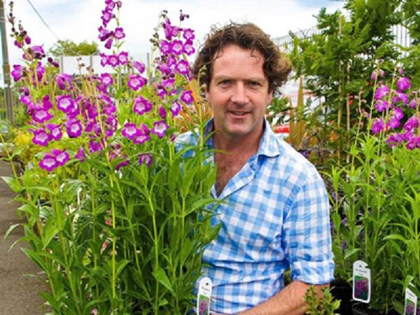 TV's Diarmuid Gavin inspires potential gardeners