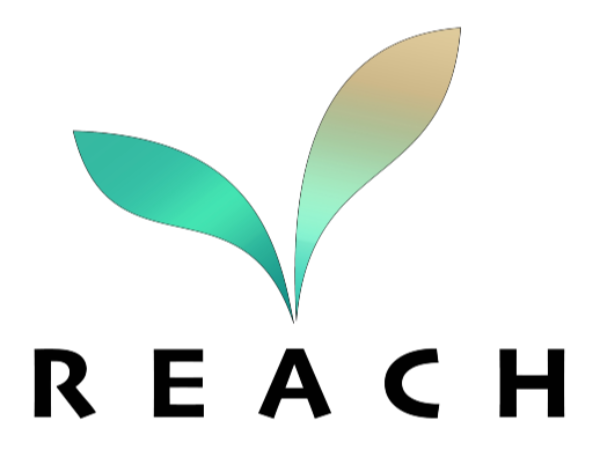 R.E.A.C.H. YOUR POTENTIAL WITH THE RACIAL EQUALITY AND CULTURAL HERITAGE NETWORK