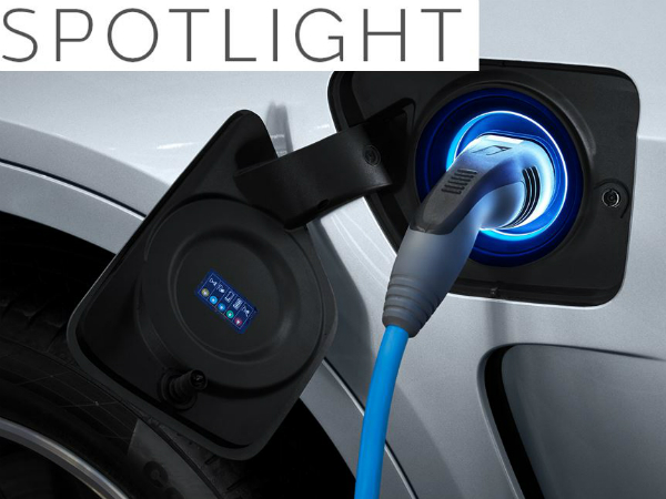 SPOTLIGHT - ELECTRIC INSIGHTS